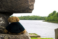 EX0526B-D02750 : Blarni, a Teddy Bear watches the estuary into Donegal Bay at Donegal Friary and cemetery