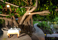 Restaurant table under a rubber plant tree in the garden of Hacienda San Jorge