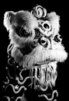 Chinese Dancing Lion