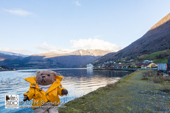Beni in front of the Nordfjord, Olden