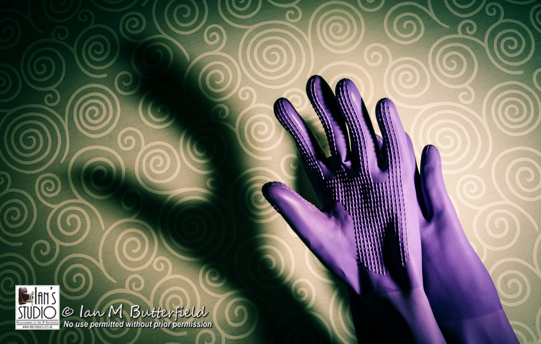 POTD (2 Years ago today) Thu, 28 Feb 2013: Purple Gloves
